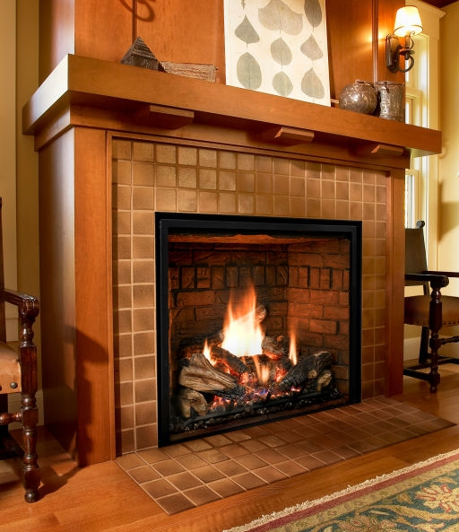 Admirable Mendota Fireplaces Alter Your Energyalter Your Energy Home Interior And Landscaping Ologienasavecom