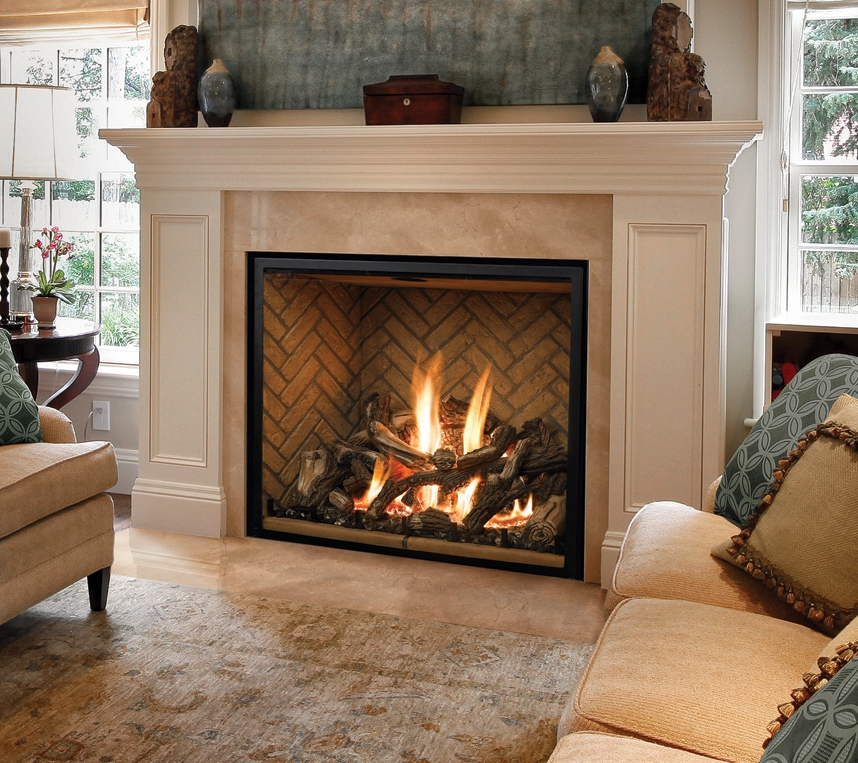 Remarkable Mendota Fireplaces Alter Your Energyalter Your Energy Home Interior And Landscaping Ologienasavecom